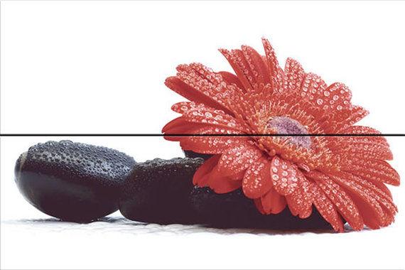 Decor Lotus 20x60 (Σετ 2 τμχ)