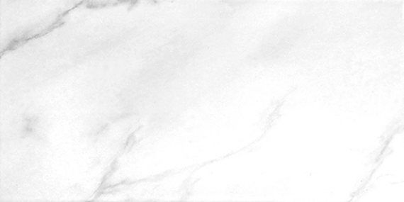 Calacata Blanco 25x50cm